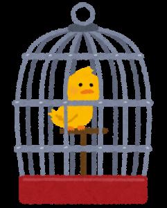 鳥かごに押し込められた存在